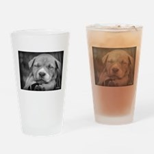 Pit bull rescue central Drinking Glass