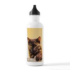 Brown Cat 1 Water Bottle