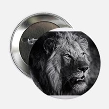 """White lion 2.25"""" Button (10 pack)"""