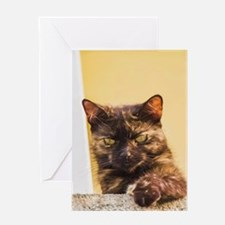 Brown Cat 1 Greeting Cards