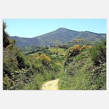 Mountains on El Camino near O'Cebreiro