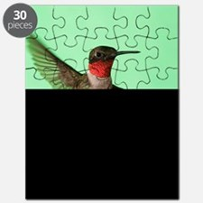 Ruby-Throated Hummingbird Puzzle