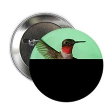 """Ruby-Throated Hummingbird 2.25"""" Button (10 pack)"""