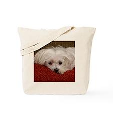 Cute Maltese Tote Bag