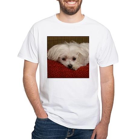 Cute Maltese White T-Shirt