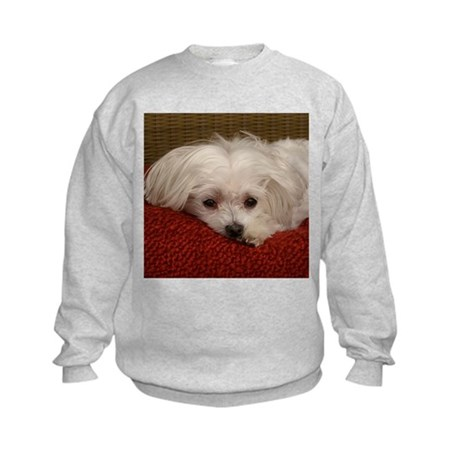 Cute Maltese Kids Sweatshirt