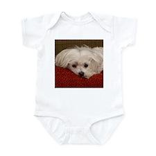 Cute Maltese Infant Bodysuit