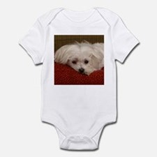 Cute Maltese Infant Bodysuit