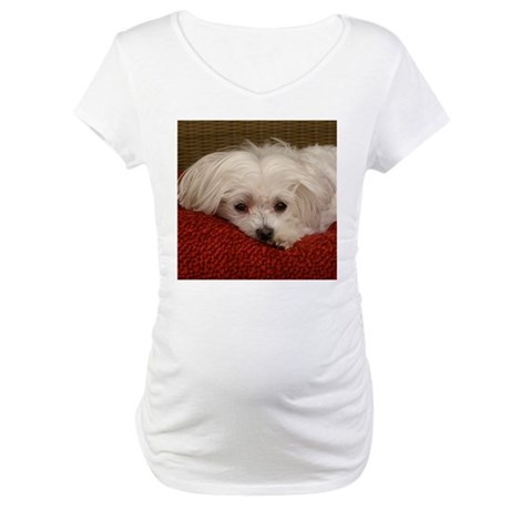 Cute Maltese Maternity T-Shirt