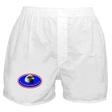 Funny Bald eagle flag Boxer Shorts