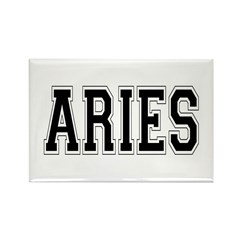 Aries Rectangle Magnet (100 pack)