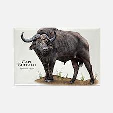 Cape Buffalo Rectangle Magnet