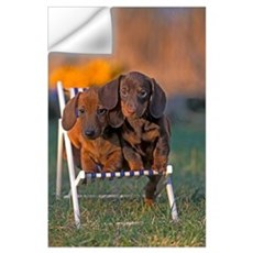 2 Dachshund puppies Wall Decal