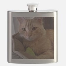We pitty the Kitty Flask