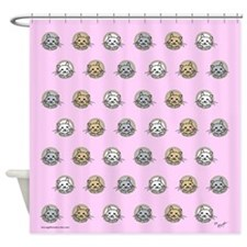 kittens on pink Shower Curtain