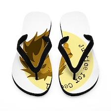 Justice for Cecil Flip Flops