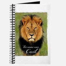 Cecil Journal