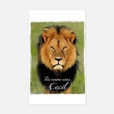 Cecil Decal