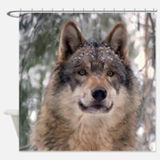 Wolf in Woods Shower Curtain