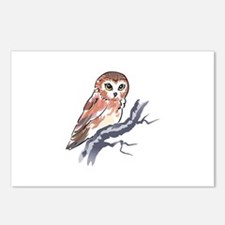 SAW WHET OWL Postcards (Package of 8)