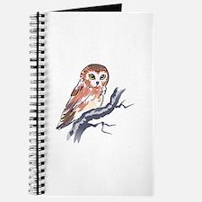 SAW WHET OWL Journal