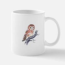 SAW WHET OWL Mugs