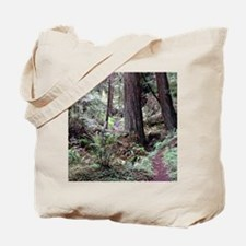 Redwoods Rainforest Tote Bag