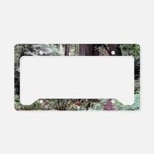 Redwoods Rainforest License Plate Holder