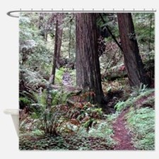 Redwoods Rainforest Shower Curtain