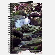 Great Smoky Mountain Stream Journal