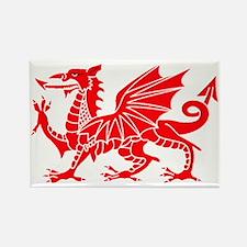 Welsh Dragon Y Ddraig Goch Rectangle Magnet
