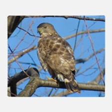 Broad winged Hawk Throw Blanket