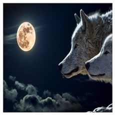 Full Moon Wolves Poster