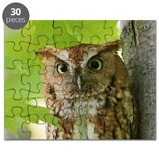 Red Sreech Owl Puzzle