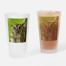 Red Sreech Owl Drinking Glass