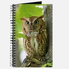 Red Sreech Owl Journal