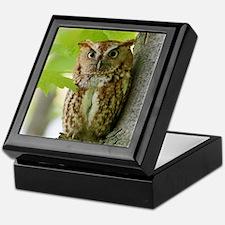 Red Sreech Owl Keepsake Box