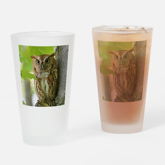 Red Sreech Owl Drinking Glass