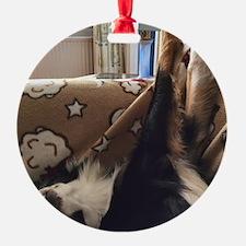 Crisp Ornament