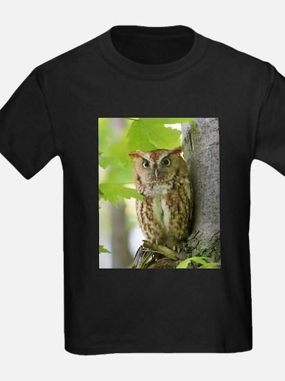 Red Sreech Owl T-Shirt