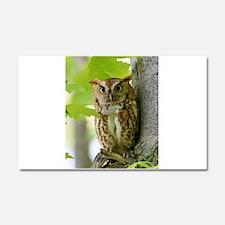 Red Sreech Owl Car Magnet 20 x 12