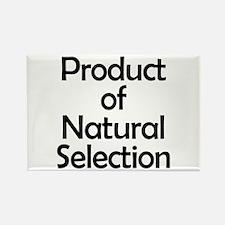 Natural Selection Magnets