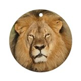 Lion Round Ornaments