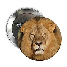 """Cecil the Lion 2.25"""" Button"""