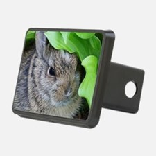 Baby Bunny Hitch Cover