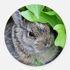 Baby Bunny Round Car Magnet