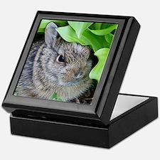 Baby Bunny Keepsake Box