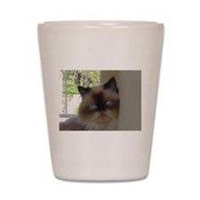 seal point himalayan Shot Glass