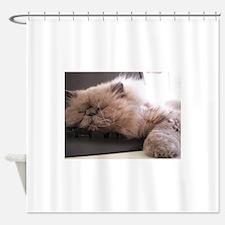 himalyan sleeping Shower Curtain