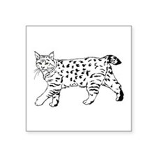 "Cute Japanese bobtail cat breed Square Sticker 3"" x 3"""
